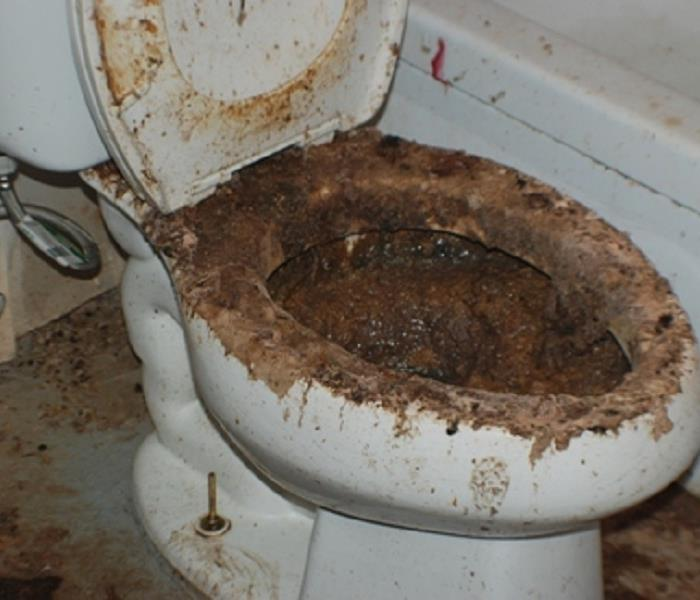 Sewage cleanup sewer toilet overflow servpro of wexford for Sewer backup smell in house